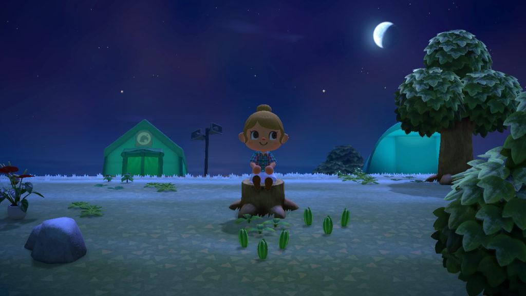 Noite Animal Crossing